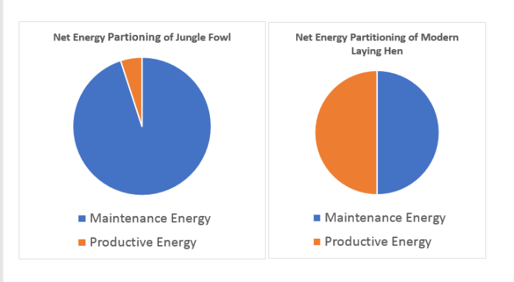 partition of energy chart Poultry Works